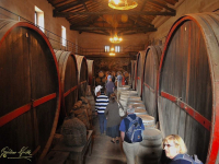 typical cellar